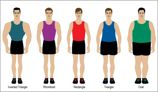 body-types-men